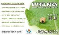 Borelioza – konsultacje lekarza chorób zakaźnych
