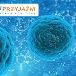 bacteria-163711_1280